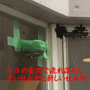 2018-06-29_16-10-45_714-2
